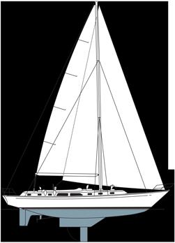 Alden 50 CC